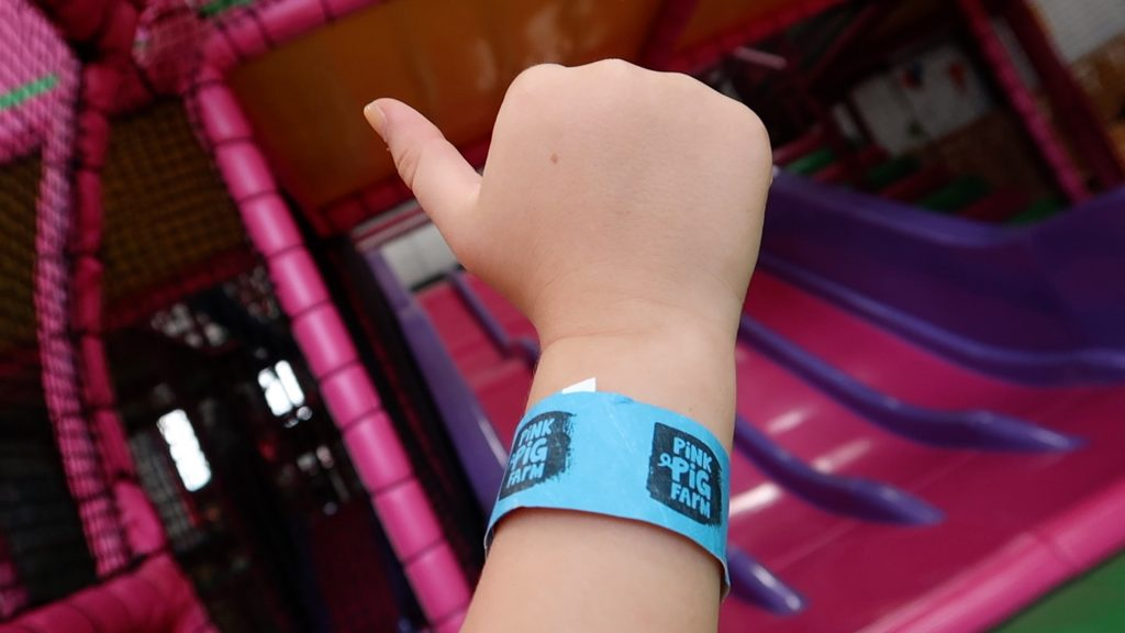 Things to do in Lincolnshire   The Pink Pig Farm, Holme near Scunthorpe wristband