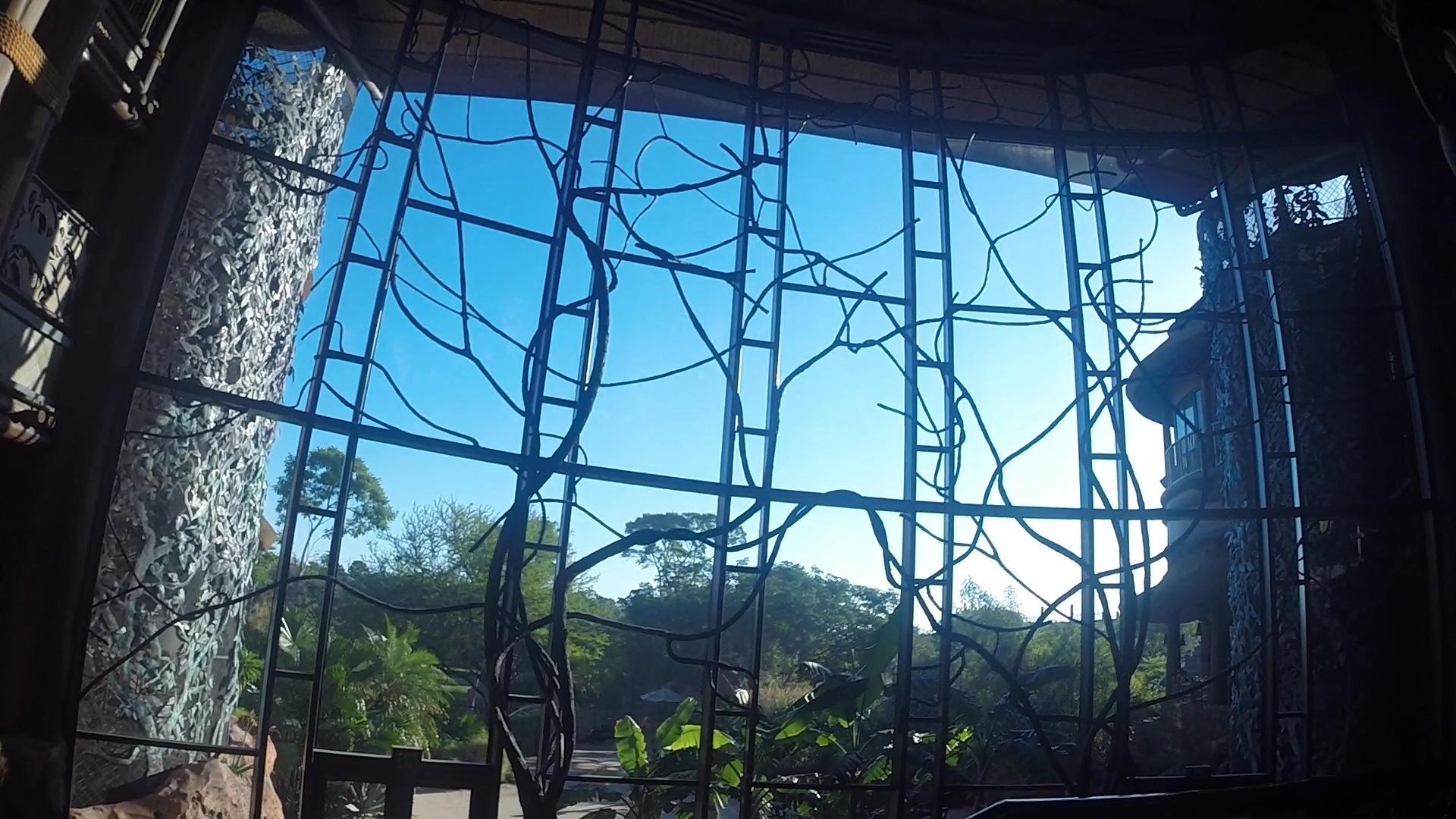 Animal Kingdom Villas Jambo House review | Walt Disney World Resort resort