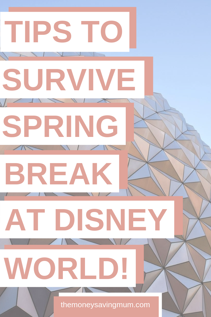 Disney World Spring Break crowds | a survival guide!
